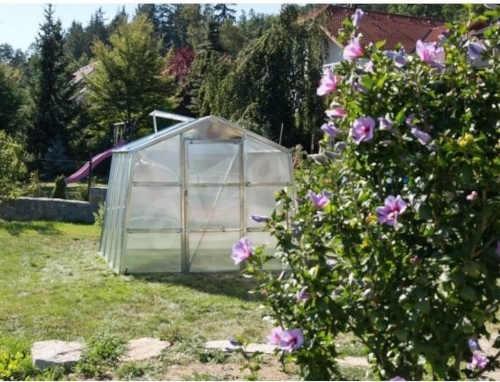zahradní skleník z polykarbonátu pro pěstitele
